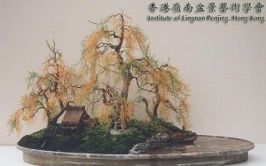 Penjing Style